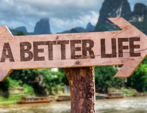 Wie du durch das Lifebook dein Leben auf die nächste Stufe bringst